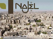 Aleppo Olijfzeep